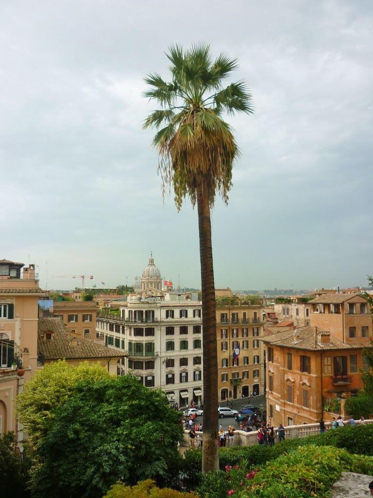 Rome The Parisian Man