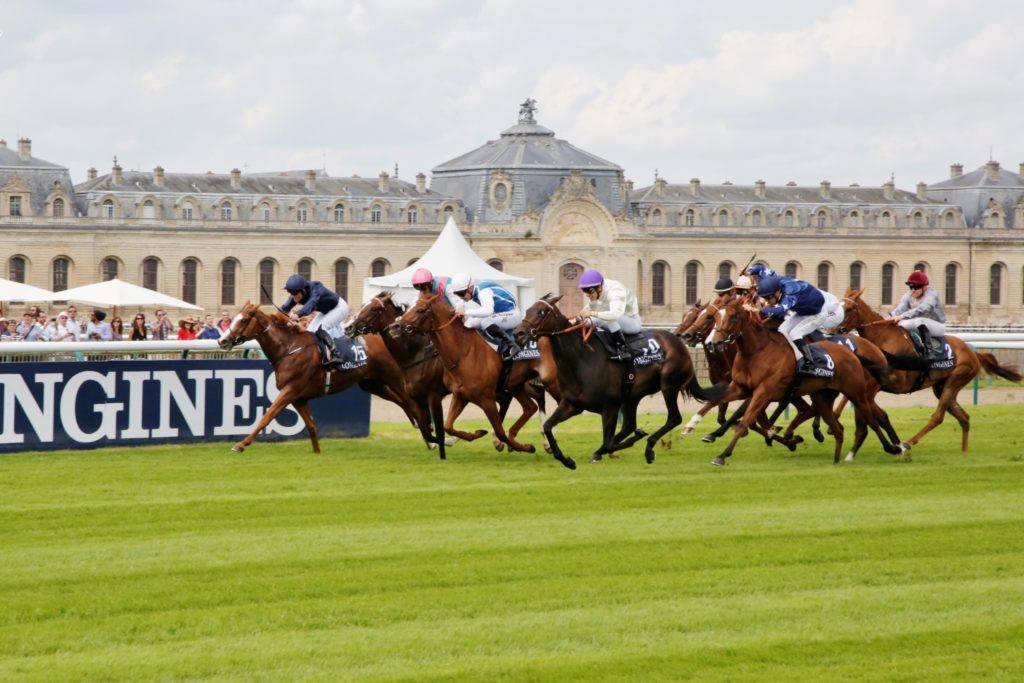 The Parisian Man Prix de Diane Longines 5